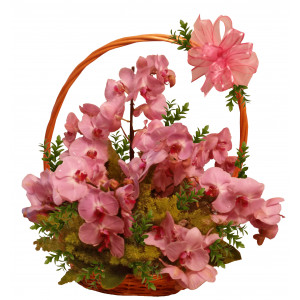 Orinoco - Basket with orchids