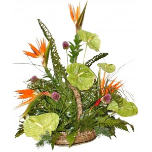 Basket of exotic flowers