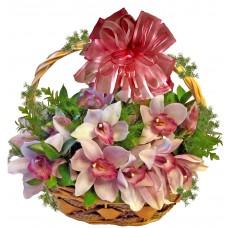 Ясмин - кошница с орхидеи