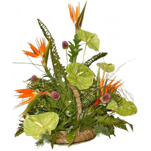 Basket of exotic flowers