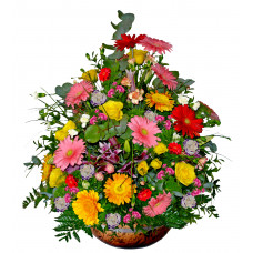Colorful Sensation - Mixed floral arrangement