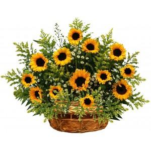 Наслада от слънчогледи - Кошница с цветя