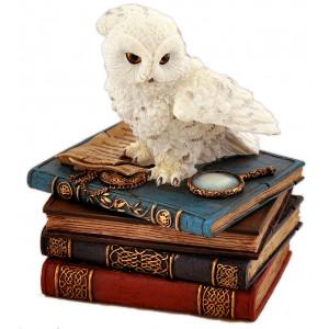 Eagle owl on books - Jewelry box