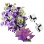 Claudia # 8- Bouquet and Cufflinks