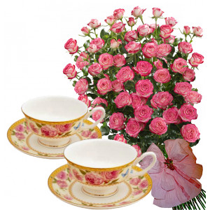 Geraldine # 7 - Roses and Set of cups & plates - LANCASTER