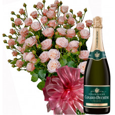 Alexa # 10 - Roses and Champagne