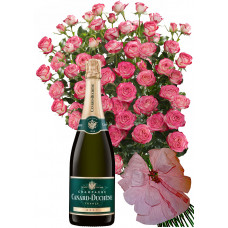 Geraldine # 9 - Roses and Champagne