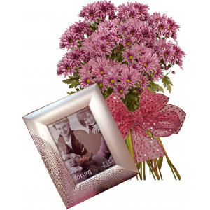 Stella # 1 - Flowers and Photo Frame