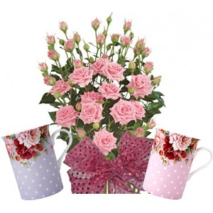 Alexa # 5 - Roses and Mug set