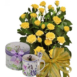 Dolorez # 4 - Roses and Porcelain cup