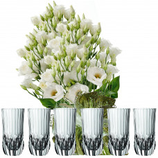 Sofia # 4 - Flowers and Drinking Glasses Set