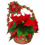 Small Poinsettia in basket