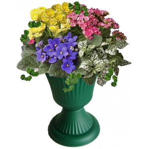 Blooming flowers in amphora # 2