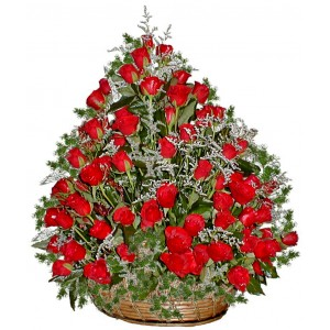 Cassandra - 101 Red rose basket