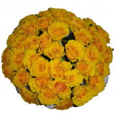 Sphinx - Yellow roses bouquet
