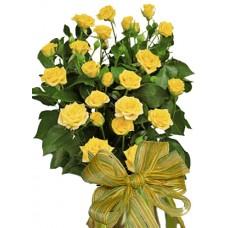 Долорез - Букет от спрей рози