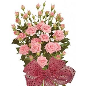 Алекса - Букет от спрей рози