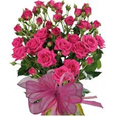 Жералдин - Букет от спрей рози