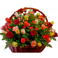 Basket with multicolored roses - Magda