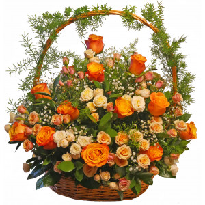 Mississippi - Rose baskets