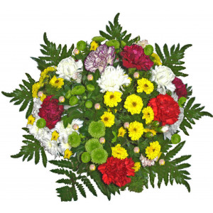 Francis - Chrysanthemum bouquet