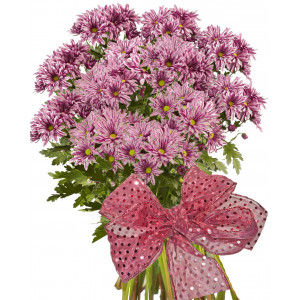 Stella - Chrysanthemum bouquet