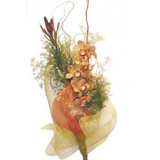 Укротяване на опърничавата - Букет орхидея
