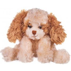 Теобалдо - Плюшено кученце