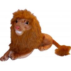 Tolomeo - Lion